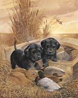 Black Lab Pups Fine-Art Print