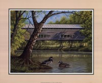 Covered Bridge With Ducks Fine-Art Print