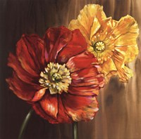 Poppies - square Fine-Art Print