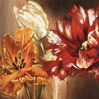 Tulips - square Fine-Art Print