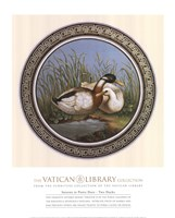 Two Ducks, (The Vatican Collection) Fine-Art Print
