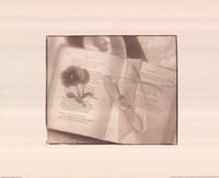 Book of Memories Fine-Art Print