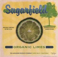 Sugarfield Limes Fine-Art Print