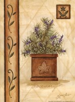 Tuscan Rosemary Fine-Art Print