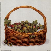 Basket Of Gooseberries Fine-Art Print