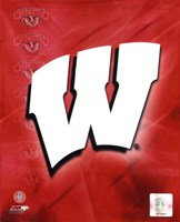 2009 University of Wisconsin Badgers Team Logo Fine-Art Print