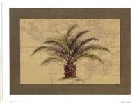 Cape Horn Fine-Art Print