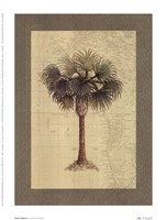 Point Galera Fine-Art Print