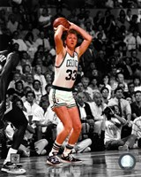 Larry Bird Spotlight Action Fine-Art Print