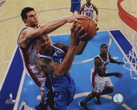 Danilo Gallinari 2009-10 Action Fine-Art Print