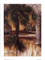 Gateway Of Palms Fine-Art Print