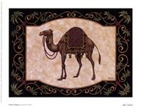 Travel In Tunisia Fine-Art Print