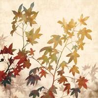 Turning Leaves II Fine-Art Print
