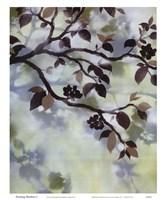 Evening Shadows I Fine-Art Print