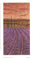 Soleil De Provence II Fine-Art Print