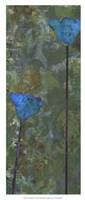 Teal Poppies IV Fine-Art Print