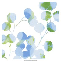 Blue Plums II Fine-Art Print