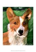Corgie on the Lawn Fine-Art Print