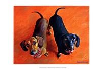 Double Dachsies Fine-Art Print