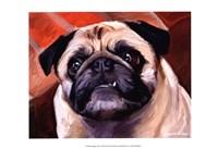 Snaggle Pug Fine-Art Print