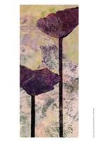 Quad Poppy I Fine-Art Print