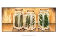 Spice Jars II Fine-Art Print