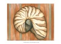 Shell on Stripes IV - light Fine-Art Print