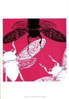 Pop Fly II Fine-Art Print