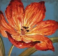 Flame Tulip I Fine-Art Print