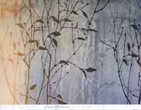 Day Spring Fine-Art Print