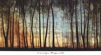 Golden Forest Fine-Art Print