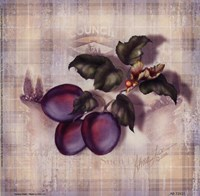 Tartan Fruit-Plum Fine-Art Print