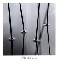 Four Reeds Fine-Art Print