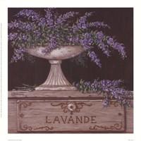 Lavande Fine-Art Print