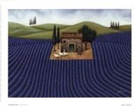 Lavender Field Fine-Art Print
