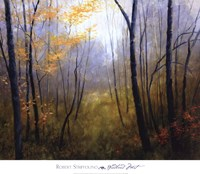 Woodland Mist Fine-Art Print