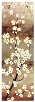 Blossom Canopy I Fine-Art Print