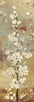 Blossom Canopy II Fine-Art Print