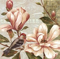Magnolia Collage II - mini Fine-Art Print