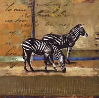 Serengeti Zebra Fine-Art Print