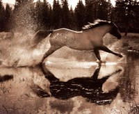 Running on Water III Fine-Art Print