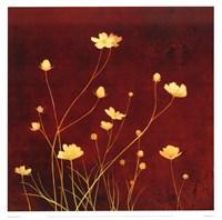 Flores en el Campo I Fine-Art Print