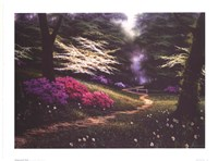Dogwood Trail Fine-Art Print