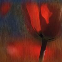 Elegant Blaze II Fine-Art Print