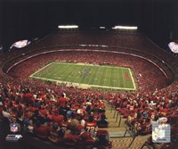 Arrowhead Stadium 2010 Fine-Art Print