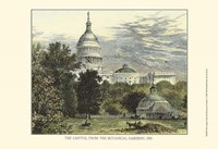 Capitol From the Botanical Gardens Fine-Art Print