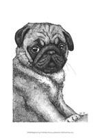 Ralph the Pug Fine-Art Print