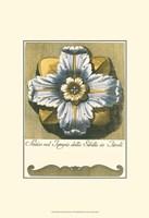Blue & Yellow Rosette III Fine-Art Print
