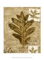 Mini Leaf Collage I (ST) Fine-Art Print