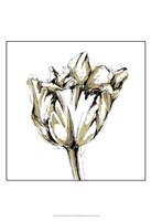 Small Tulip Sketch I Fine-Art Print